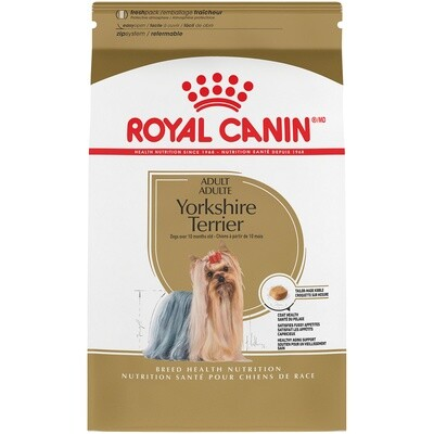 RC BNH YORKSHIRE TERRIER 10LB.