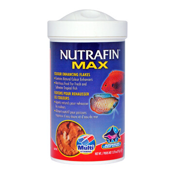 NUTRAFIN TROPICAL COLOUR ENCHANCING FLAKES 77G.