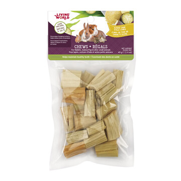 LIVING WORLD SM ANIMAL CHEW SUGAR CANE CUBES 40G.
