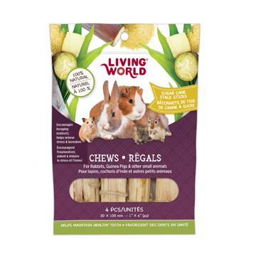LIVING WORLD SM ANIMAL CHEW SUGAR CANE STICKS 4PK.