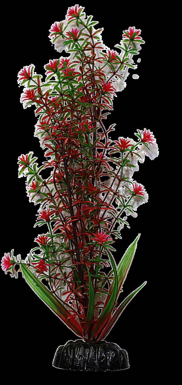 AL PLASTIC PLANT GREEN RED ROTALA 12IN.