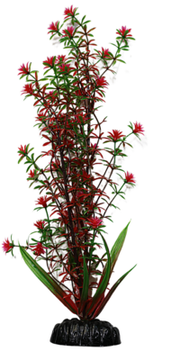 AL PLASTIC PLANT GREEN RED ROTALA 12IN.