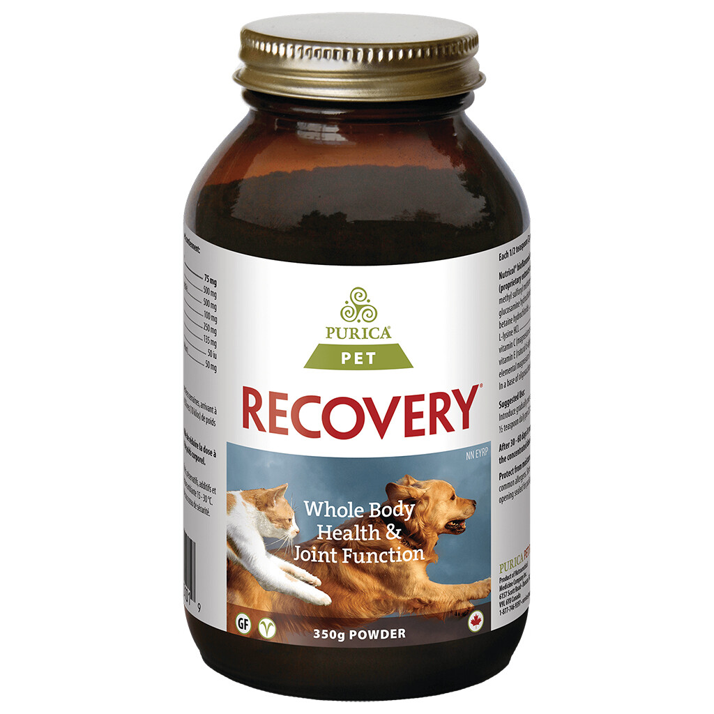 RECOVERY SA POWDER 350GM.
