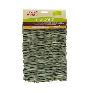 LIVING WORLD HANGOUT GRASS MAT MED.