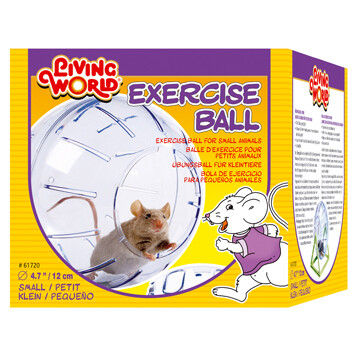 LW EXERCISE BALL SM.