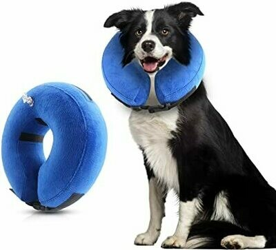 PAWISE INFLATABLE COLLAR MED.