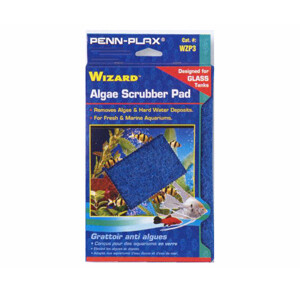 WIZARD SCRUBBING PAD FOR GLASS 6X9IN.