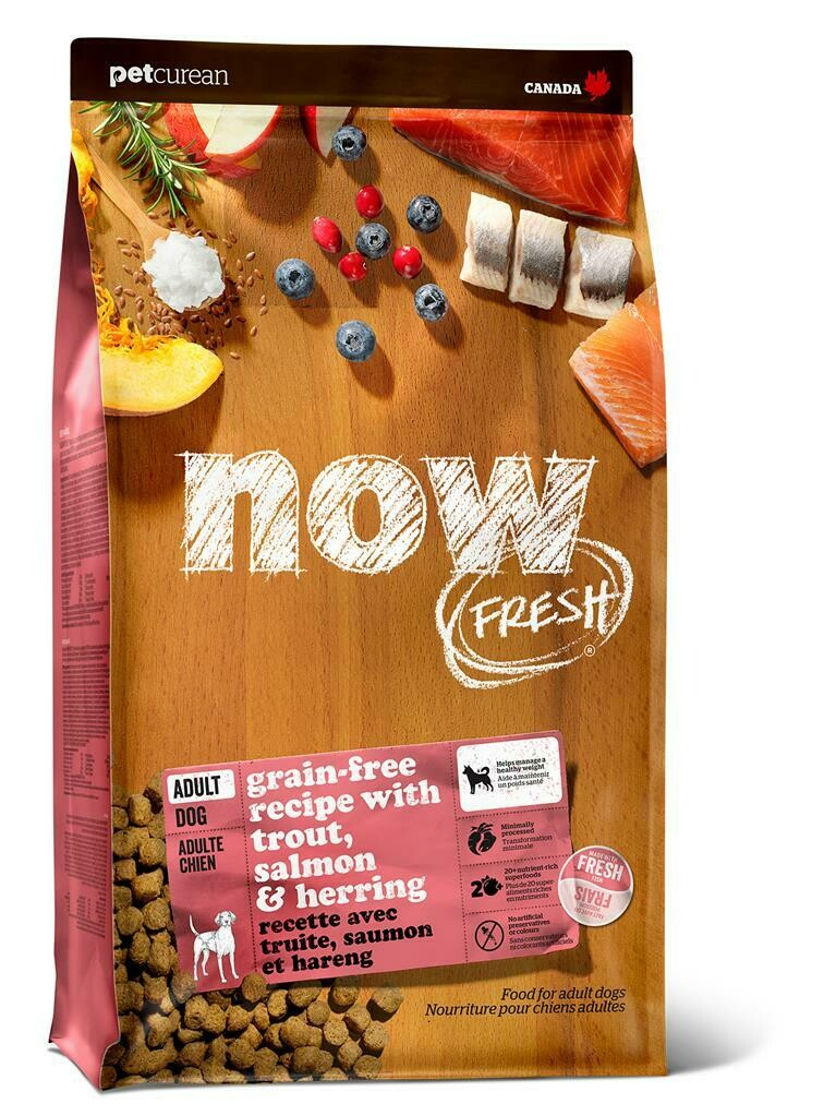 NOW DOG TROUT SALMON & HERRING  ADULT 1.6KG