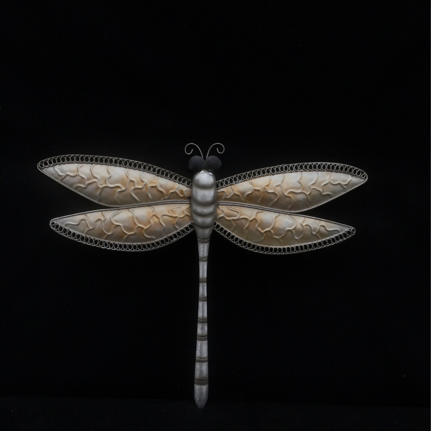 Gold And Silver Dragonfly