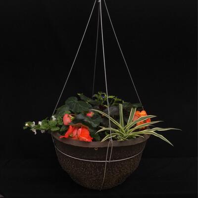 """16"""" Hanging Basket - Shade"""