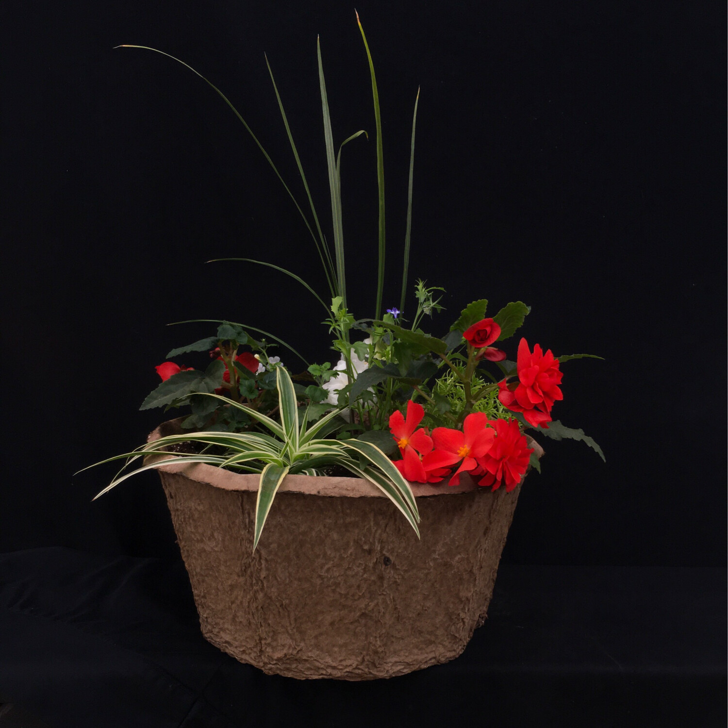 Dexagon Fiber Planter - Shade
