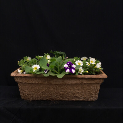 Short Fiber Window Box - Full Sun