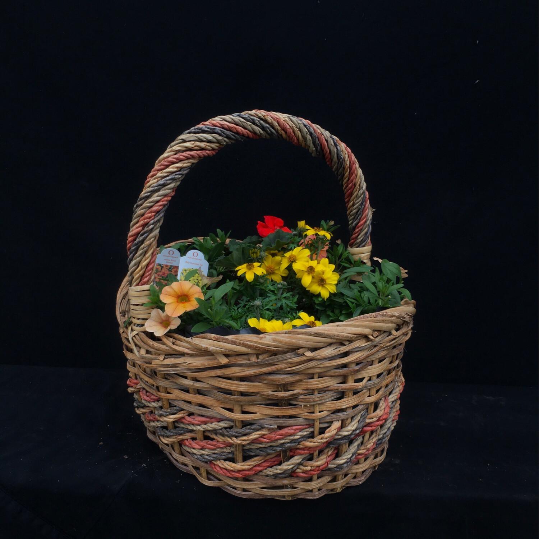 Small Basket With Orange & Yellow Flowers - Full Sun