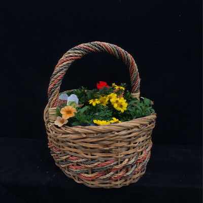 Small Basket With Orange & Yellow Flowers - Full Sun