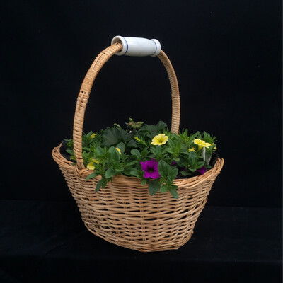 Small Basket With Yellow, Purple & Pink Flowers - Full Sun