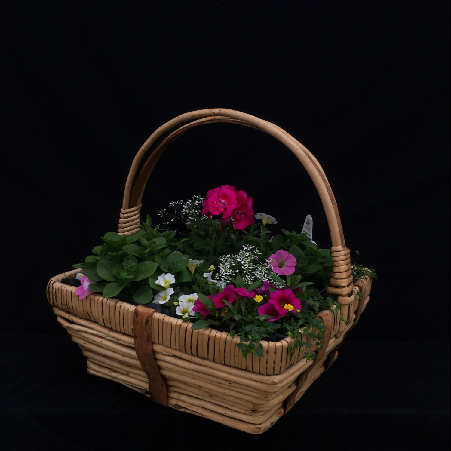 Large Square Basket With Pink, White And Yellow Flowers - Full Sun