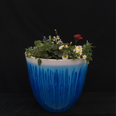 White & Blue Splash Planter With White, Purple And Coral Flowers - Full Sun