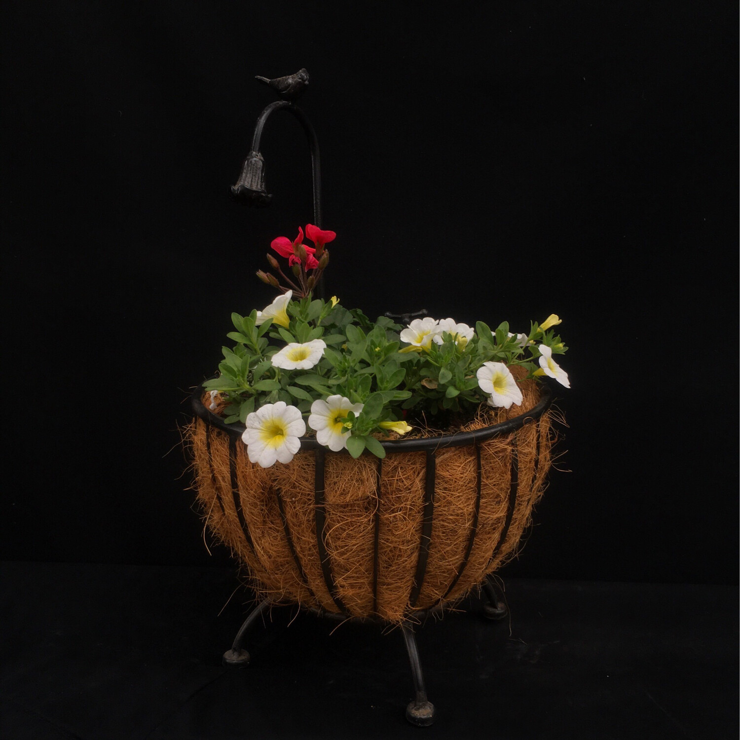 Bird Bath Planter With White And Coral Flowers - Full Sun