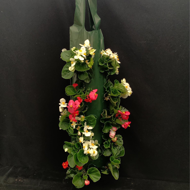 Hanging Begonia Wall Bag