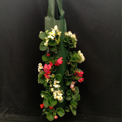 Hanging Begonia Wall Bag