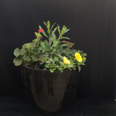 Large Black & Gold Speckled Pot - Yellow / Pink