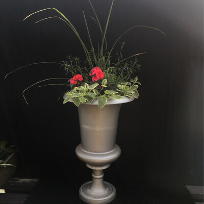 Large Planted Silver Urns - Sold Separately