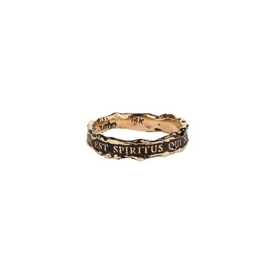 810-142-GR8532 14Kt PYRRHA Narrow Texture Band Ring R989