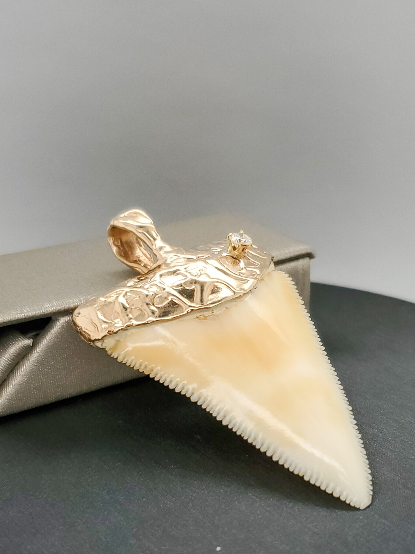 14k Yellow Gold Caped Shark Tooth & Diamond Pendant