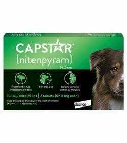 CAPSTAR TABS DOG GREEN 25LB +