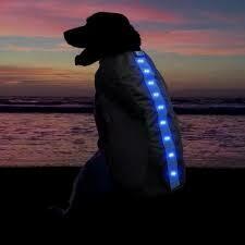 4id LED VEST BLUE LARGE