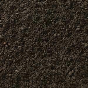 Premium Sandy Compost