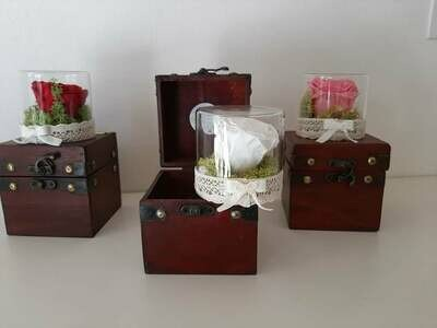 Rose stabilizzate in baule vintage