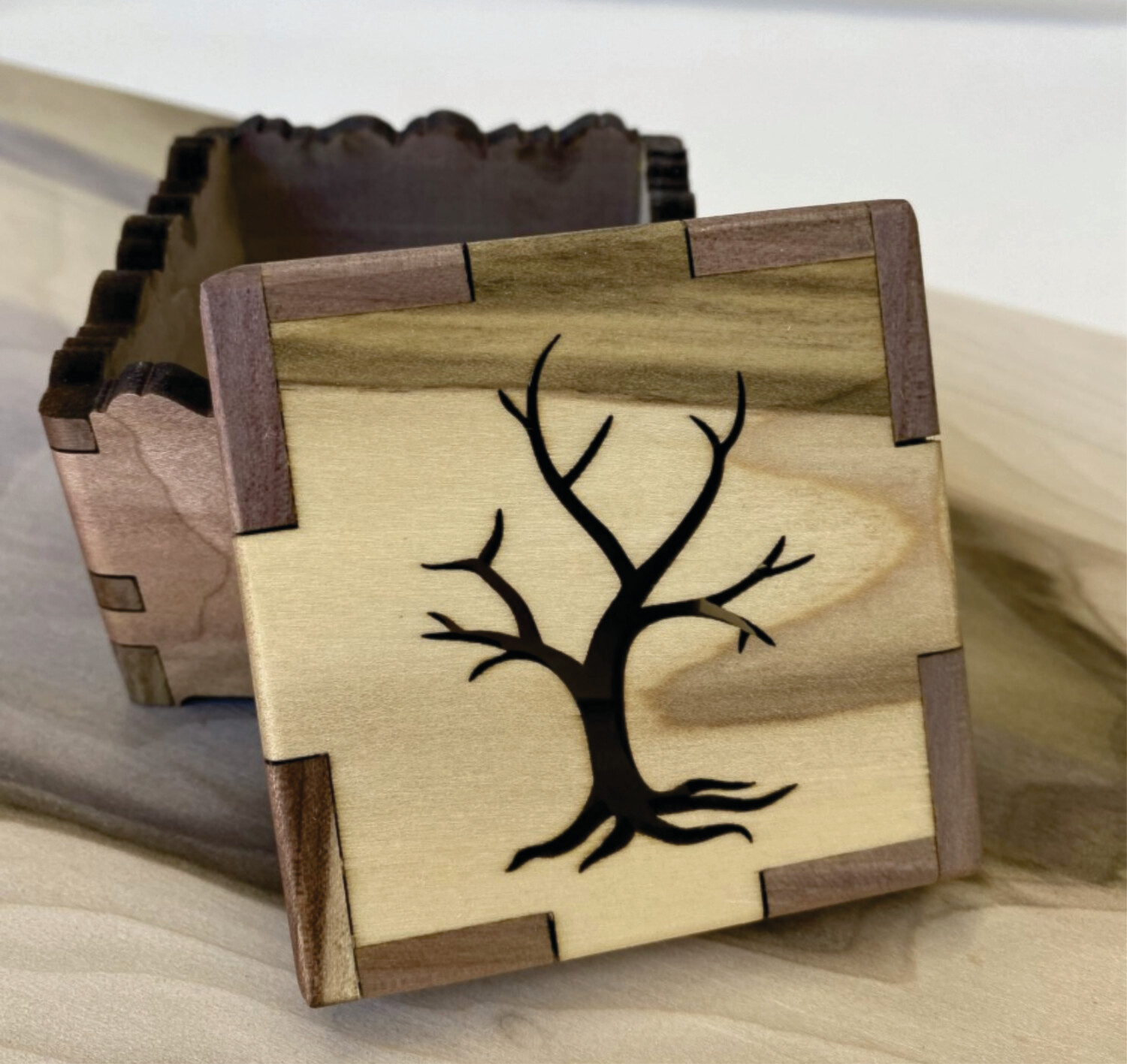 Naked Tree Treasure Box