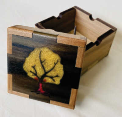 Apple Tree Buzz Box