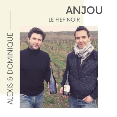 Loire - Anjou