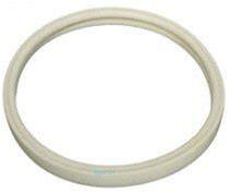 O-ring, pool light