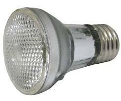 Spa Bulb, 60w 120v, Halogen