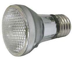 Spa Bulb, 60w 120v, Halogen