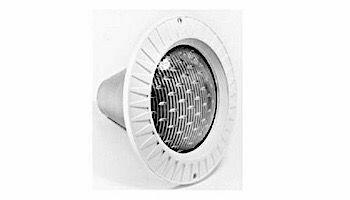 Light 100W / 120V 100Ft Cord Halogen