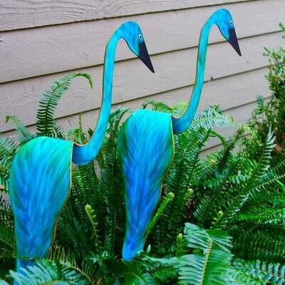 Birds - Blue Green Peacock