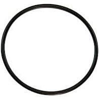 Whisperflo/Challenger Lid O-Ring