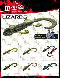 """Lizzard 6"""""""