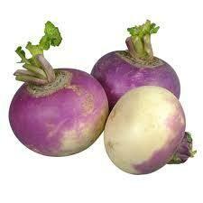 Navet violet. Nelle récolte. Provence 500 grammes