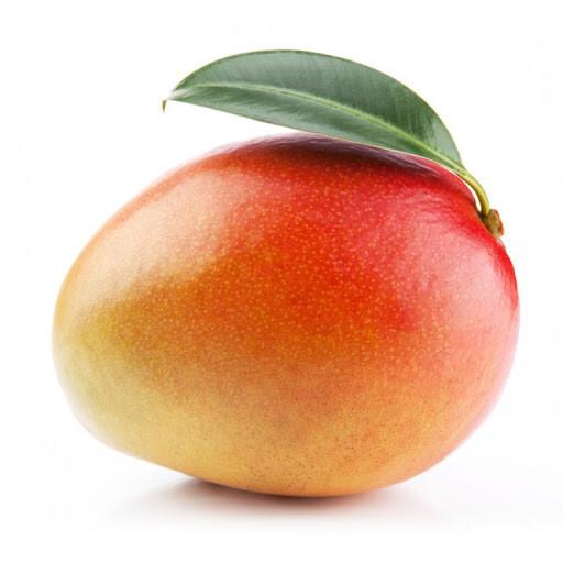 Mangue mûrie sur l'arbre. Pérou. 1 pièce