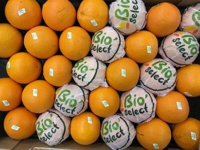 Orange à jus - Maroc.  2 kilos
