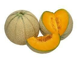 Melon charentais. Maroc. 1 pièce