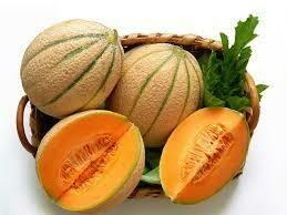 Melon de Cavaillon PROMO 2 PIÈCES