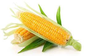 Maïs frais. Orgeval. 1 pièce