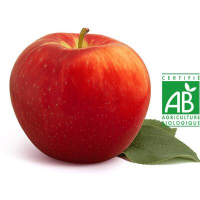 Pomme BIO Royal Gala. 1 kilo. env 6 pommes