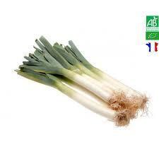 Poireau BIO. Direct producteur. 500 grs env. 2 à 3 poireaux